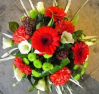 Red and Lime Posy